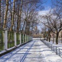 Весна в городе.( Комсомольск-на-Амуре). :: Виктор Иванович Чернюк