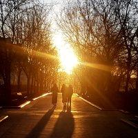 Весна на Никитском бульваре в Москве :: Елена