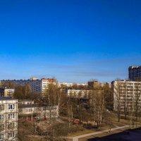 Вид с Турку 22 корп 1 Санкт-Петербург :: Роман Алексеев