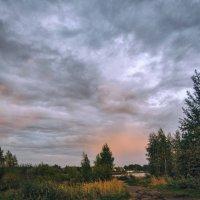 Кусочек лета :: Екатерина Рябинина