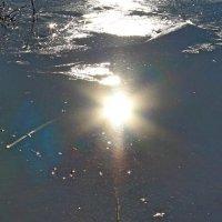 Отражение солнца в воде. :: Татьяна Перегудова