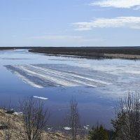 Огромная льдина на реке Онеге. :: Марина Никулина