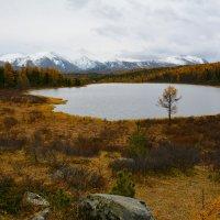 Озеро. :: Валерий Медведев