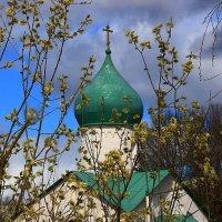 Вербное Воскресение !!! :: Николай Кондаков