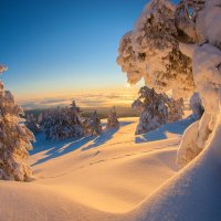 Зима на плато Ай-Петри :: Сергей Титов