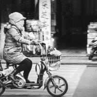 Пекинские будни... :: Александр Вивчарик