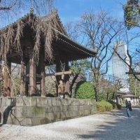 В буддистском храме :: Андрей K.