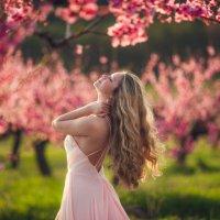 Персиковый сад :: Алексей Латыш