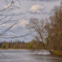 В разлив на Клязьме :: Сергей Цветков