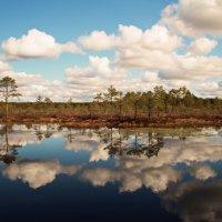 В  апреле часто встречаются живописные облака.. :: Татьяна Ивановна