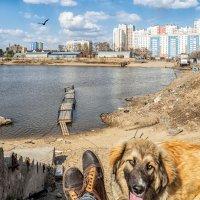 Затон в Хабаровске :: Igor Volkov