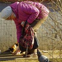 Кто кормит кошек (бездомных) - :: Юрий Куликов