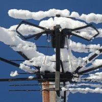 Снег апреля... :: Владимир Шошин