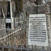 Старое кладбище. :: Николай Сидаш