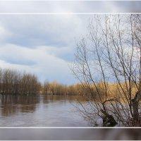Течет река Вятка... :: Александр Широнин