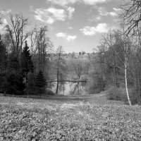Круглое озеро ... :: Лариса Корж