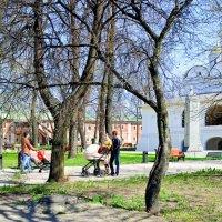 Прогулка по Ярославлю :: Нина Синица