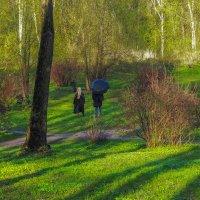 Прогулкив Весеннем Парке :: юрий поляков