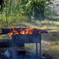 Огонь на мангале :: Юлия Денискина