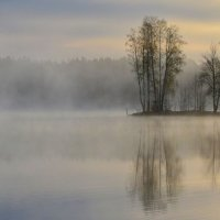 Утром весенним..... :: Юрий Цыплятников