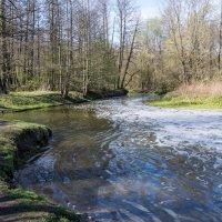 весенняя река :: Сергей Лындин