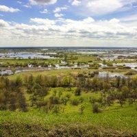 Разлив реки Десна :: оксана