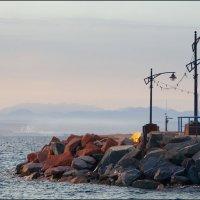 Море, утро, лёгкий туман :: Валерий Готлиб