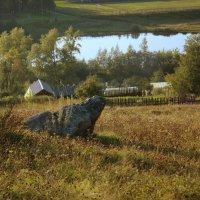 Камень Лягушка :: Нэля Лысенко