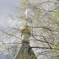 Светлая Седмица :: Евгения Куприянова