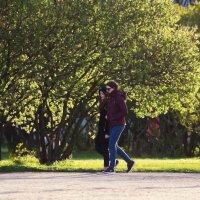 Прогулка в весеннем саду :: Aнна Зарубина