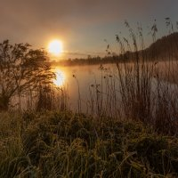 утро у реки :: vladimir
