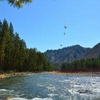 На весенней реке. :: Валерий Медведев