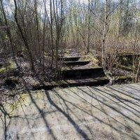 руины :: Сергей Лындин