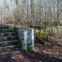 руины дачи Полуденского П. С. :: Сергей Лындин