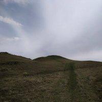The hills :: Елена Елена