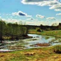 Река Вигала в начале мая :: Aida10
