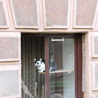 У окошка / At the Window :: Tatiana Kravchenko