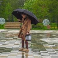 Под Дождём :: юрий поляков