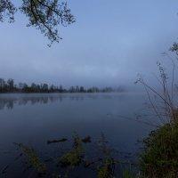 в тумане :: vladimir