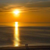 тёплый вечер на Белом море :: Елена Кордумова