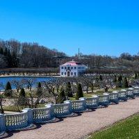 Петергоф, Нижний парк :: Константин Шабалин