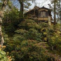 Чайный домик на территории Золотого храма :: Shapiro Svetlana