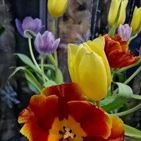 Тюльпаны. :: ОКСАНА ЮРЬЕВНА ШВЕЦ