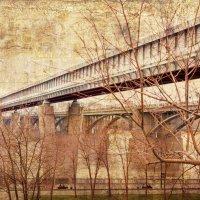 Любимый Новосибирск... :: Дмитрий