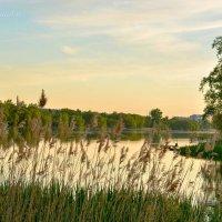 Весенний вечер на озере :: Сергей Шаталов