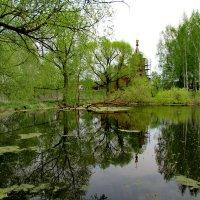 Сельский пруд :: Александр Чеботарь