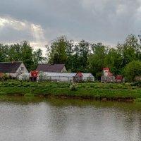 Кроличий городок :: Vlaimir