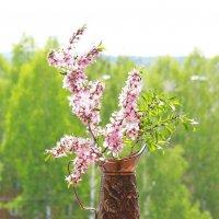 Весна! :: Наталья Казанцева