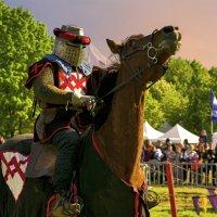 достопочтенный рыцарь :: Георгий Вересов