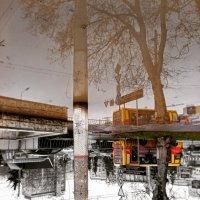 Рефлексия лужи на Куйбышатнике... :: Сергей Леонтьев